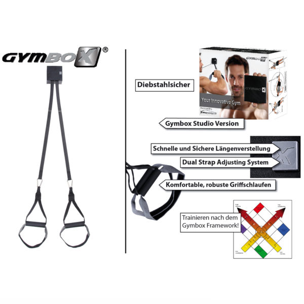 The Gymbox Suspension Trainer