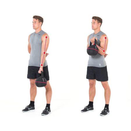 Biceps One Arm