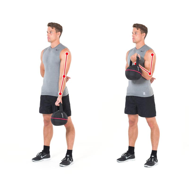 Kettlebell Exercise for the Biceps with the Smashbell